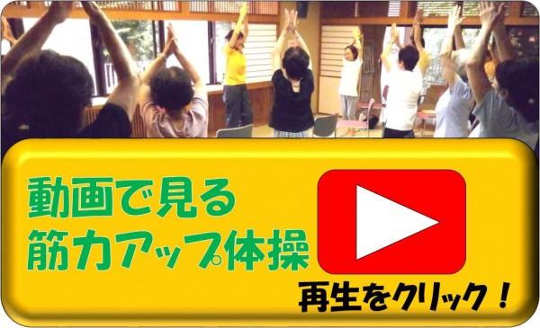 動画で見る筋力アップ体操